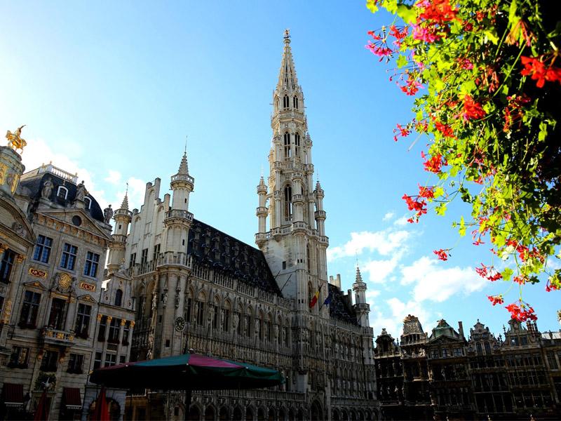تحصیل در بروکسل بلژیک
