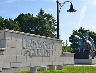 دانشگاه گلف